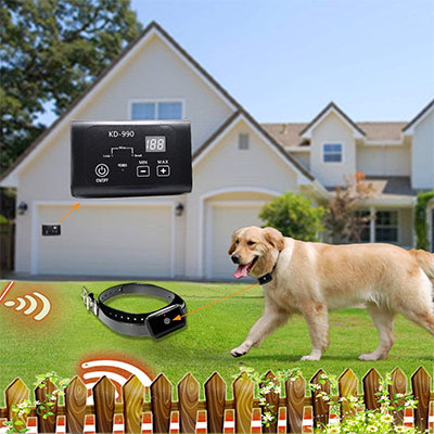 Best In-Ground Fences AngelaKerry Electronic Dog Fence System