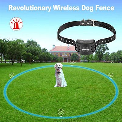 Best Wireless Dog Fences COVONO Wireless Dog Fence