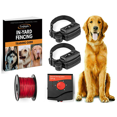 Best Dog Containment Fences Earlyhights Underground Electric Dog Fence